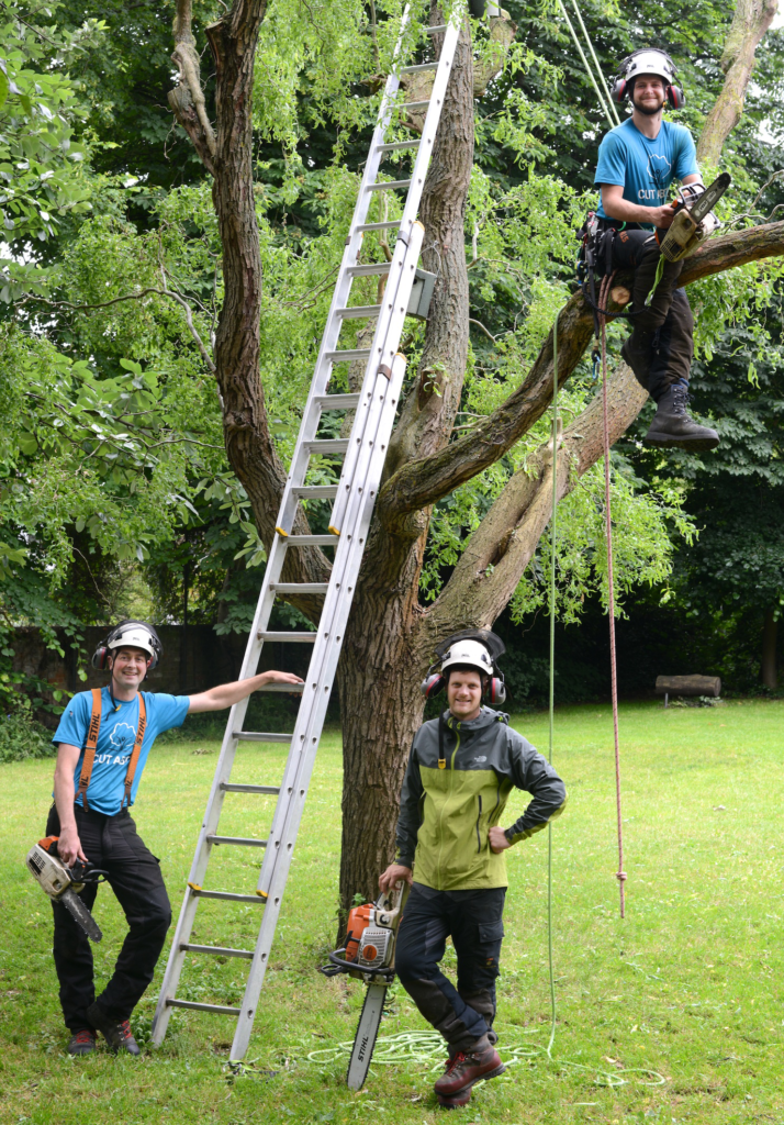 Team at Cut Above Tree Management